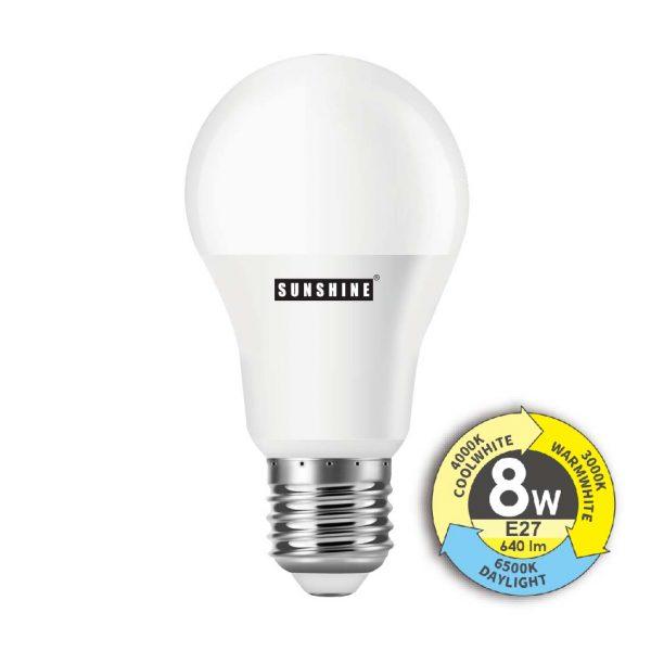 LED 轉色燈泡 8W