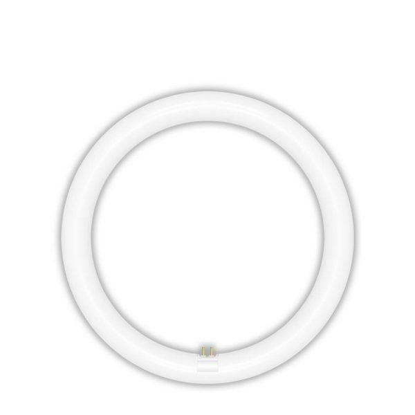LED 環型管 20W