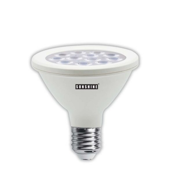 LED 射燈 PAR30 12W