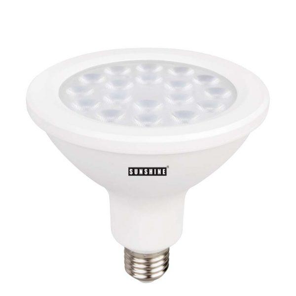 LED 射燈 PAR38 18W
