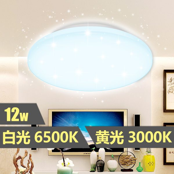 LED 開關調色吸頂燈 (LTCLL) 12W
